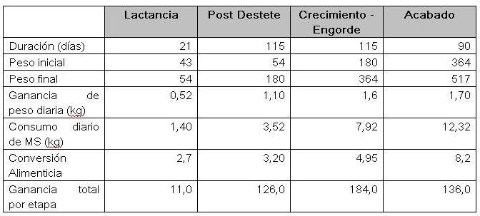 vacunos_engorde_fases_dias