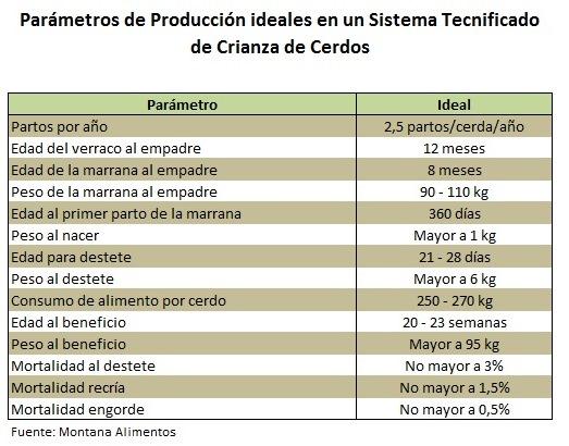 http://proyectosperuanos.com/wp-content/uploads/2017/10/cerdos_parametros_ideales_sistema_tecnificado.jpg